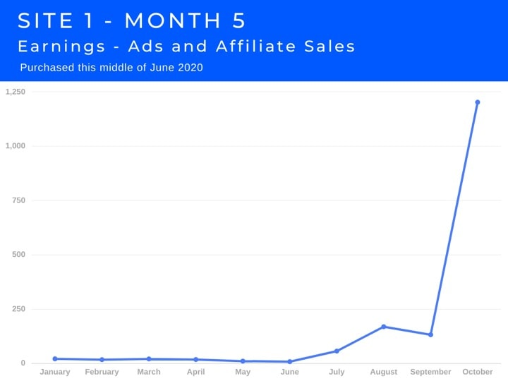Site 1 Case Study Month 5 Earnings Affiliate Sales