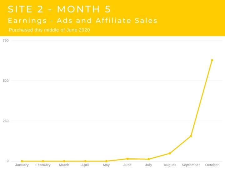 Site 2 Case Study Month 5 Earnings Affiliate Sales